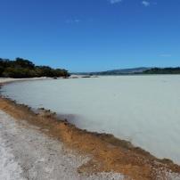 13/01/2016 - Rotorua