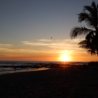 28/02/2016 - Playa Santa Teresa