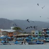 20/08/2016 - Puerto Lopez